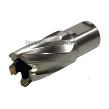 Фреза по металлу HSS Elmos hs5519 (19х55 мм)