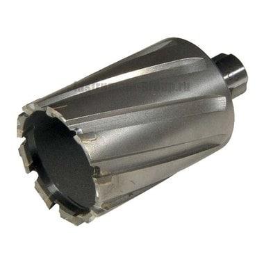 Фреза по металлу с твердосплавными наконечниками Elmos ct5070 (70х50 мм)